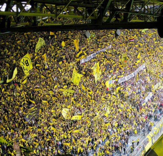 borussia dortmund football fans